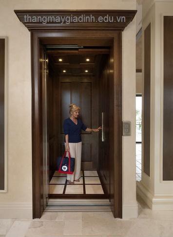 Công ty cung cấp thang máy gia đình uy tín tại Gia Lâm